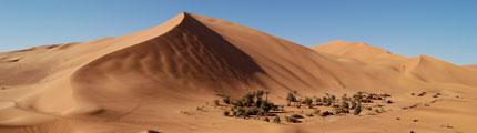 Excursions dans le désert